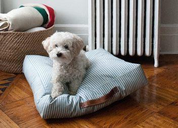 Cuccia per cani fatta a mano: istruzione passo per passo