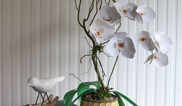 Orchidee di carta. Foto-lezione