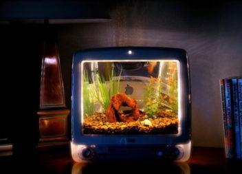 11 idee su trasformazione della TV in cose nuove