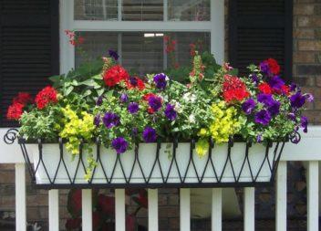 21 idee su fiori sulle finestre