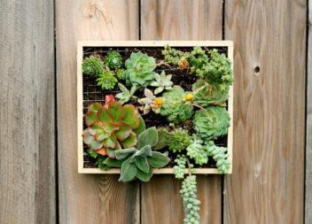 17 idee su giardini verticali