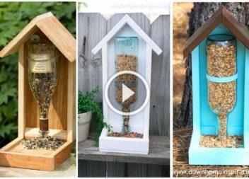 Mangiatoia straordinaria per uccelli, video-lezione