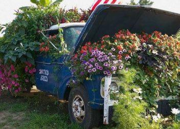 11 idee spettacolari su giardino fiorito dall'auto