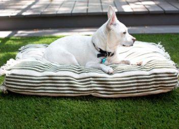 Cuscino per cane