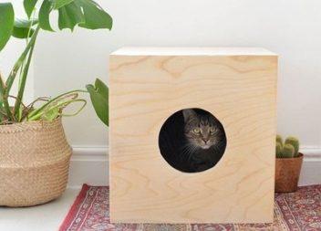Cuccia semplice per il vostro gatto fatta con le vostre mani:master-class