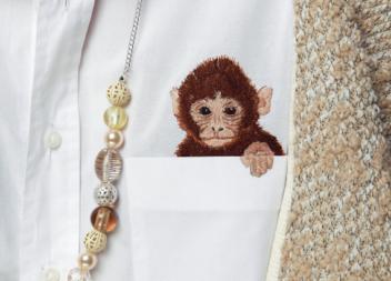 Cuciamo la scimmia sulla camicia