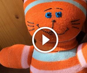 Gatto di un calzino