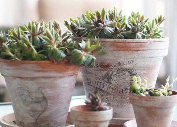 Idee su decorazione dei vasi per fiori