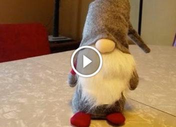 Nano scandinavo: video-lezione
