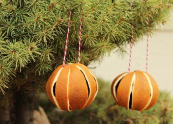 Decorazione dell'albero di Natale: mandarini essiccati